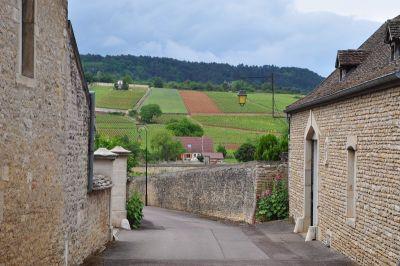 Karakteristična slika Burgundije