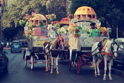 Veličanstveni kaos Mumbajskih ulica