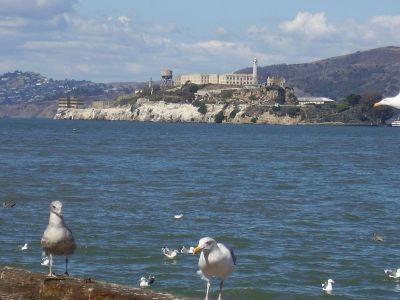 Alcatraz je nazobilazni dio vizure grada