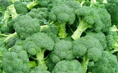 Glukozinolati su važni u zeljastom povrću