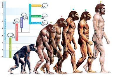 Teoriju evolucije civilizirani svijet je prihvatio u 19. stoljeću